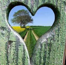 via del cuore