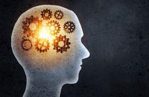 come lavora la mente