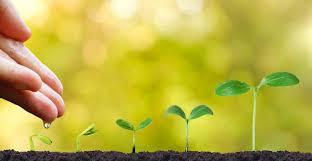 crescita personale spirituale